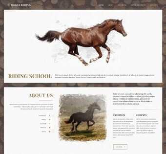 desain web klub kuda, desain web komunitas kuda, desain web balap kuda, desain web toko kuda