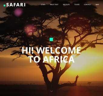 desain web bonbin, desain web zoo, desain web kebun binatang, desain web taman safari